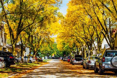 Palatine, Illinois, Fall, 2014