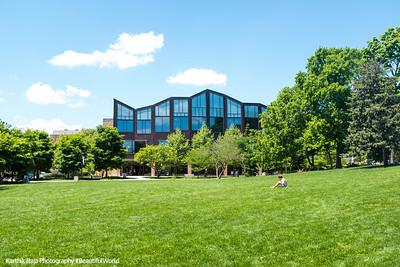 Public Library, Scoville Park, Oak Park, IL
