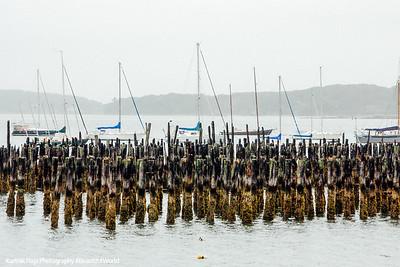 Marina in Portland, Maine