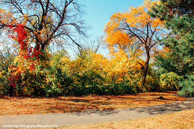 Hennepin Island Park, Minneapolis