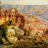 Grand Canyon, American Museum of Natural History, New York City