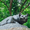 A panther at Central Park - Still Hunt by Edward Kemeys, New York City
