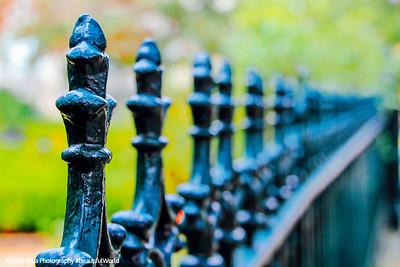 Wrought Iron fence, Andrew Low House, 1848, Savannah, Georgia