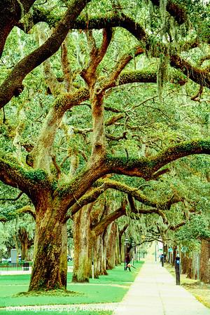 Emmett Park, River Street, Savannah, Georgia