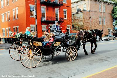 Historic Savannah Horse carriage tours, Savannah, Georgia