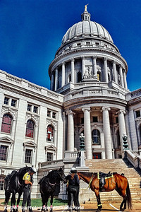Horses and Police at the State Capitol, Madison, Wisconsin