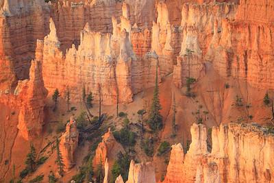 Hoodoos, Paunsagunt Plateau, Sunrise Point, Bryce Canyon National Park, Utah - 8100 feet (2469 m)