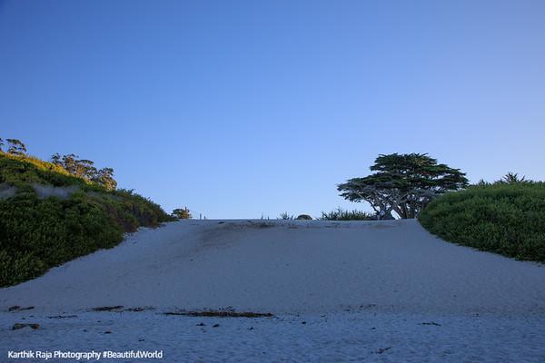 Beach, Carmel by the Sea, CA