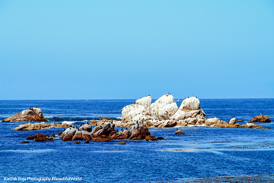 Monterey Bay, California