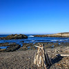 Tide Pools, Point Lobos State Natural Reserve,  California