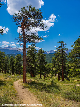 Moraine Park, Rocky Mountain National Park, Colorado