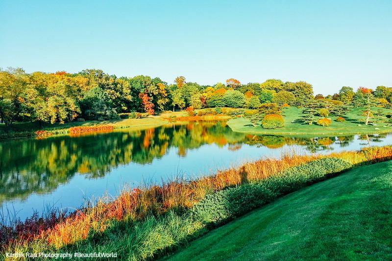 Chicago Botanic Garden, Lake Reflection