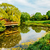 Chicago Botanic Gardens, Lake Reflection