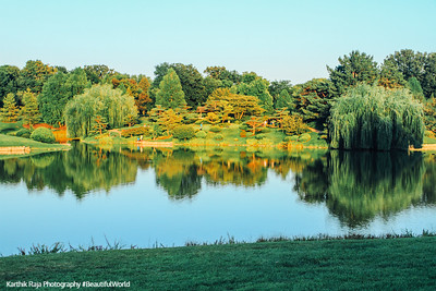Chicago Botanic Garden, Lake Reflection