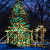 Chicago Botanic Garden Winter Wonderfest 2016