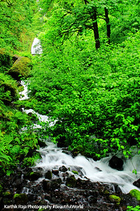 Wahkeena Falls Creek, Columbia River Gorge National Scenic Area, Oregon
