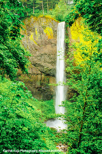 Latourell Falls, Guy W. Talbot State Park, Columbia River Gorge National Scenic Area, Oregon