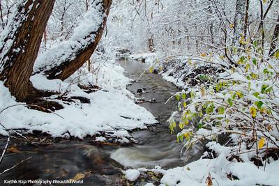 Snow Storm or Snow paradise? Palatine, Chicago