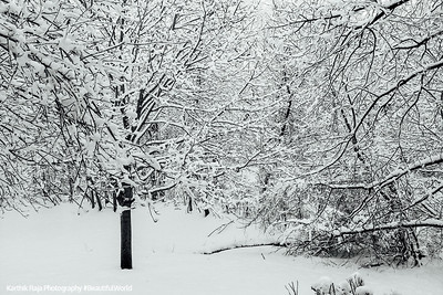 Winter, snow, Chicago