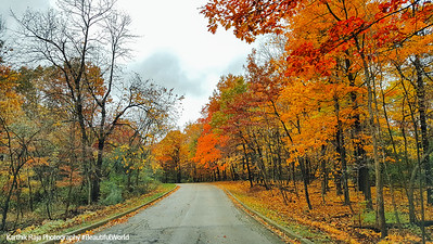 Fall Colors, Palatine, Deer Grove Forest Preserve, Illinois