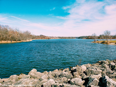 Ned Brown Forest Preserve, Elk Grove, IL