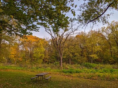 MIssissippi Palisades State Park, Illinois