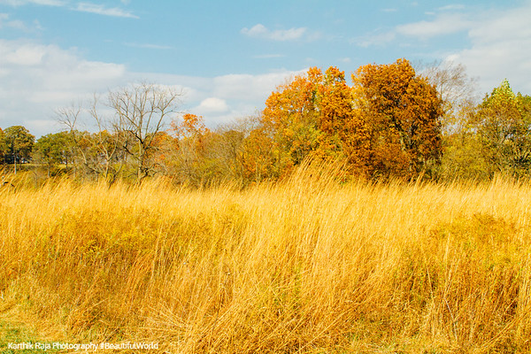 Prophetstown State Park, Indiana