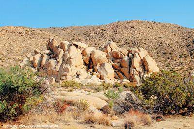 Hall of Horrors, Sheep Pass, Joshua Tree National Park, California
