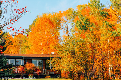House in the woods, Fall Colors, North Shore Scenic Drive, Duluth to Two Harbors, MN