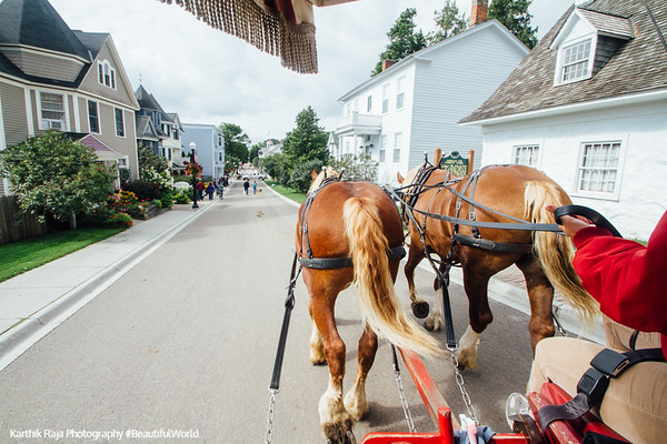 Duke and Jewel lead the way, Mackinac Island, Michigan