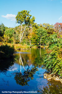 Lake Marmo, Morton Arboretum, Fall, Chicago, 2015