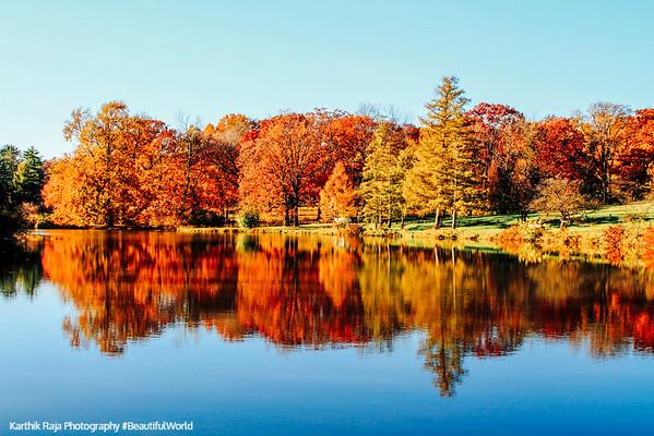 Fall Colors Reflections on Lake Marmo, Morton Arboretum, Lisle, Illinois