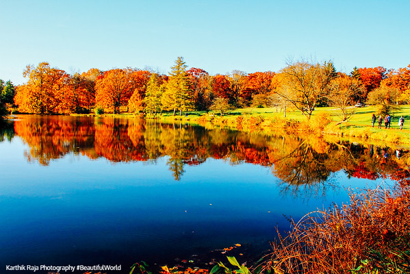 Fall Colors Reflections on Lake Marmo, Morton Arboretum, Lisle, Illinois