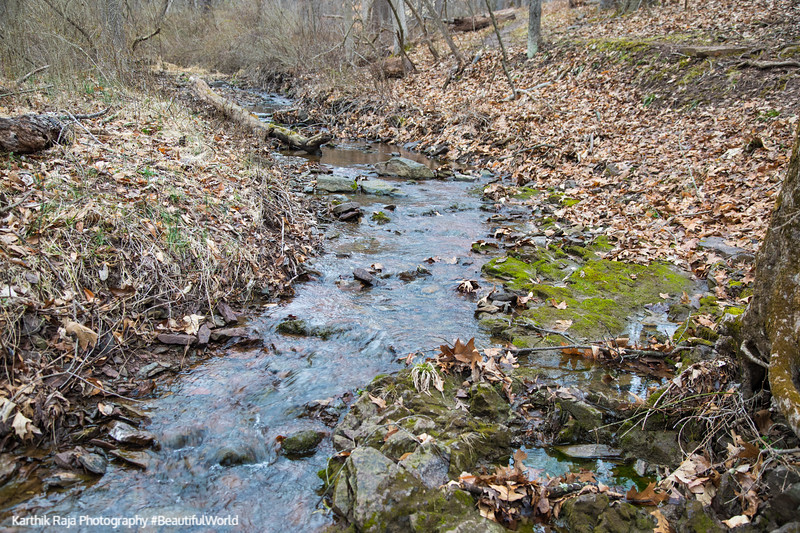 Creek, Washington Crossing State Park, New Jersey