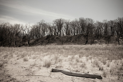 Sand dunes, Kemil Beach, Indiana Dunes National Park