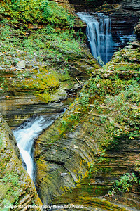 Every turn has a waterfall, Watkins Glen State Park, NY