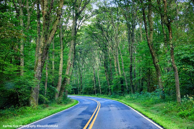 Skyline Drive, Shenandoah National Park, Virginia