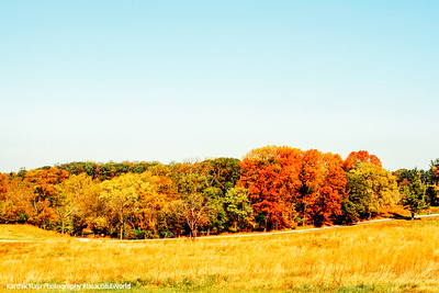 Valley Forge - fall