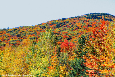 New Hampshire - Fall is peak season, White Mountain National Forest, NH
