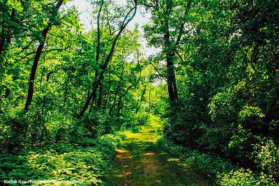 Big Foot BEach State Park Wisconsin