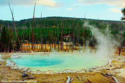 Cistern Spring, Norris Geyser Basin - Yellowstone National Park