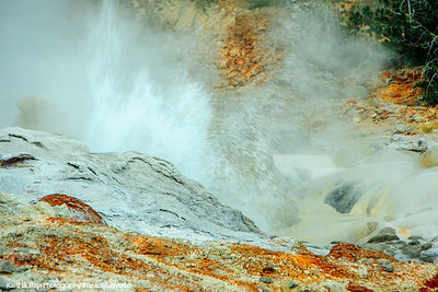 Steamboat Geyser, Norris Geyser Basin - Yellowstone National Park