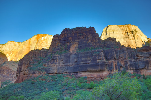 Canyons or Cathedrals? - The Great White Throne on the right back, The Organ at the front, Zion National Park, Utah