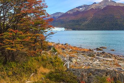 Gletscherzunge des Perito Moreno am Lago Argentino