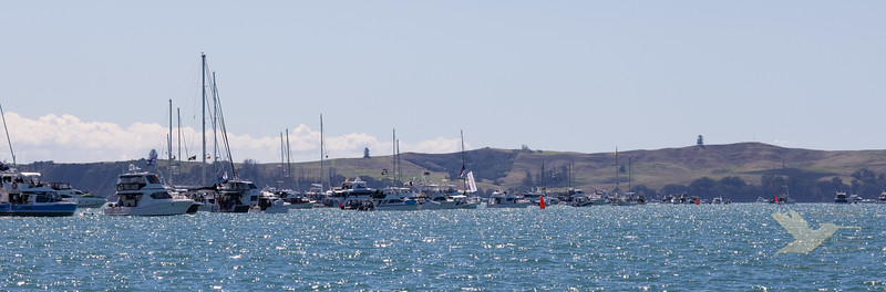 Americas Cup Day 2