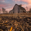 Cotton Candy Harvest Sunset
