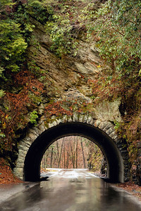 """The Tunnel of Love"""