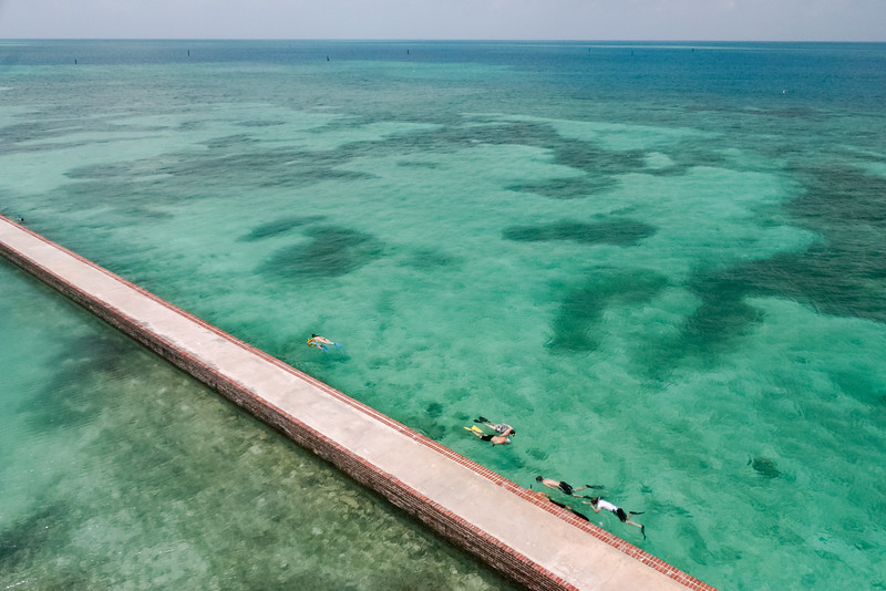 Snorkelers along the moat walls of Fort Jefferson in Dry Tortugas National Park, FL.