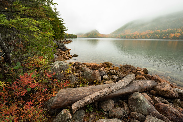 Jordon Pond's fall foliage on a foggy autumn day, Acadia National Park, ME