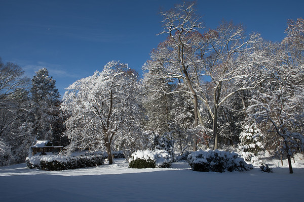 Lincoln Snow